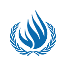 UN Special Rapporteur (on Human Rights in Iran)